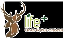 One deer two islands logo