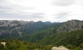 il Territorio forestale di Silana-Urzulei, luogo dei primi rilasci dei cervi