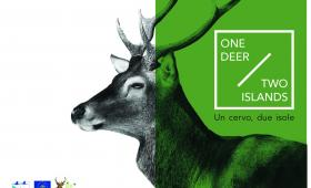 Brochure Ente Foreste - copertina
